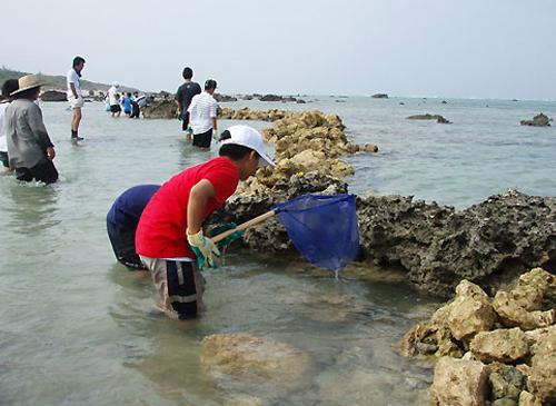 2006.7.15 鹿島・白保 子ども交流 漁体験