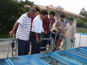 4.24 沖縄県水産海洋振興センター石垣支所を訪問。ギーラの生態や放流方法などを学ぶ